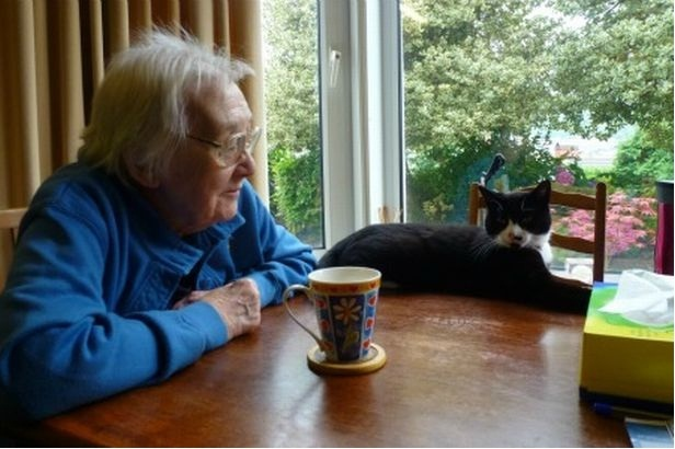 This photo from http://www.walesonline.co.uk/news/local-news/elaine-morgan-re-learning-ropes-after-2058316 shows her at the same table in the same window where she entertained me.  Not sure about the cat
