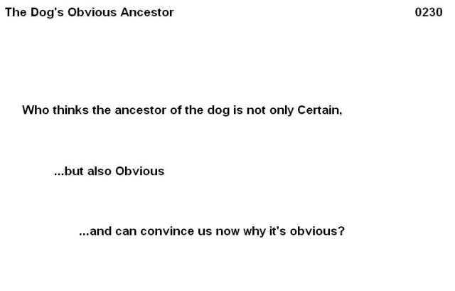 0230 The dogs obvious ancestor 01