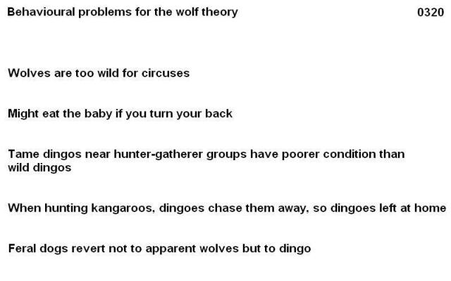 0320 behavioural problems fro wolf ancestry 02