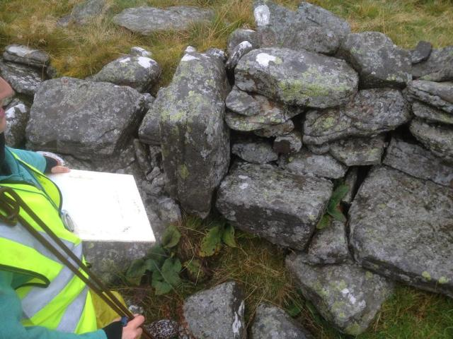Complex stone block feature with Sophie's nose alongside for scaling